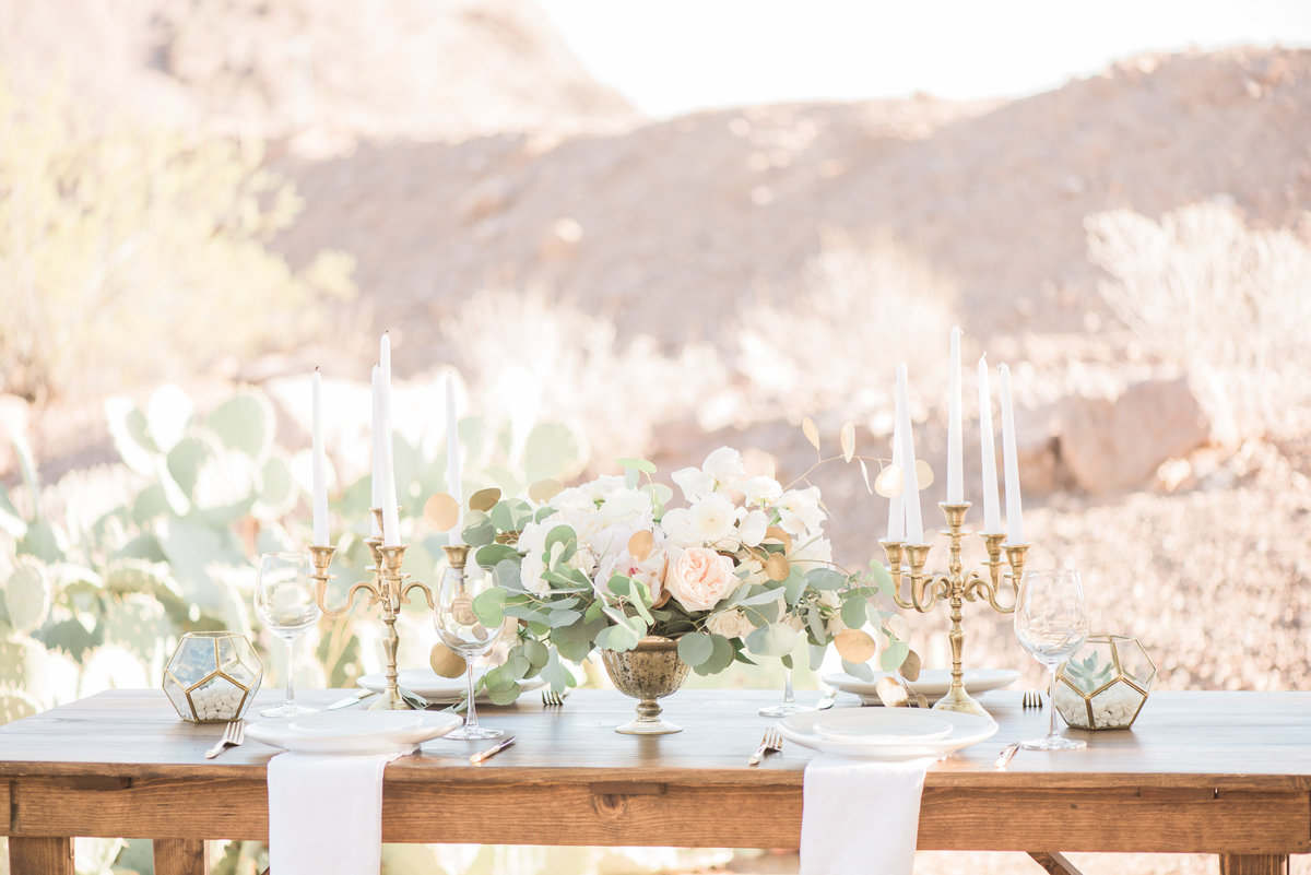 Arizona-Wedding-Erica-Sofet-Photography-2752
