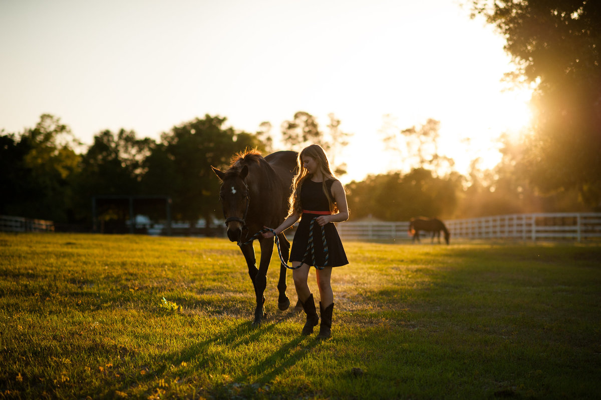 Ormond Beach equestrian photographer