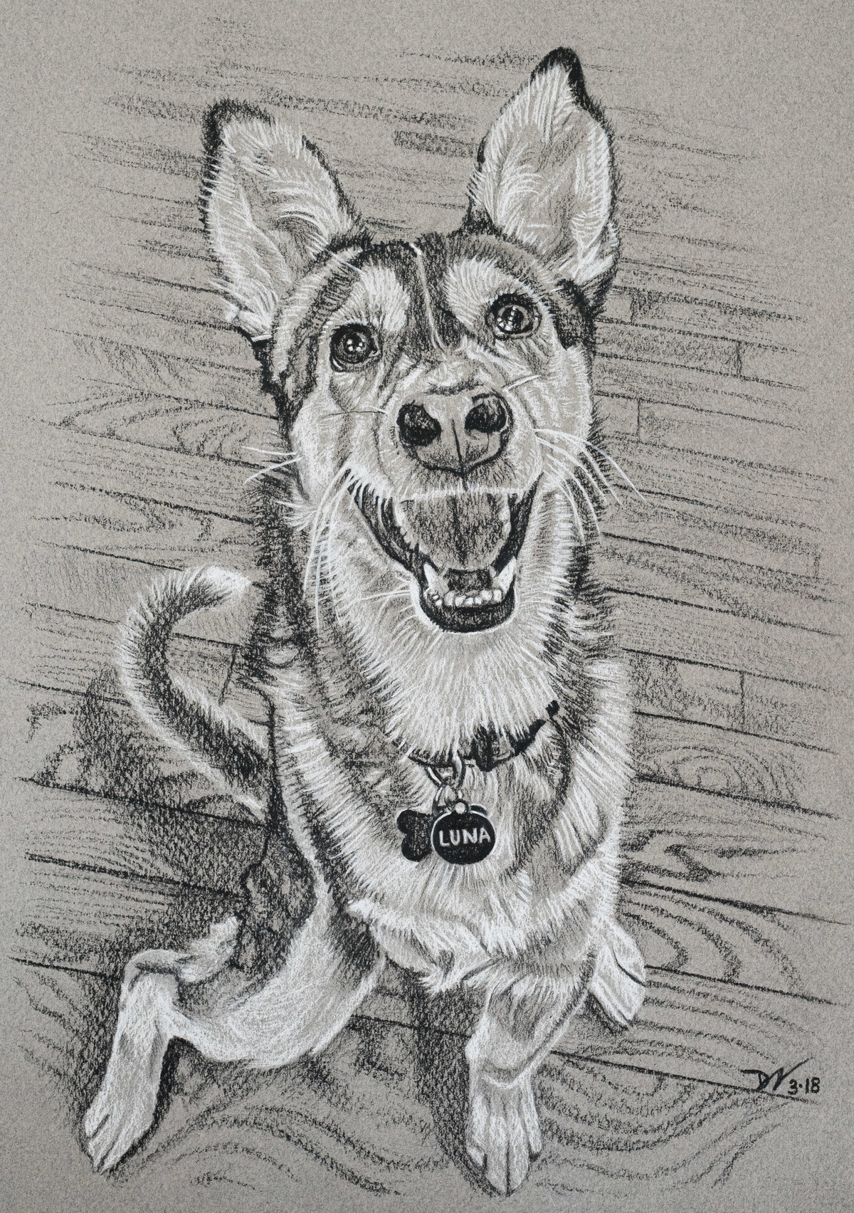 2018-03 Luna Pup - 9X13 - charcoal on paper - SA