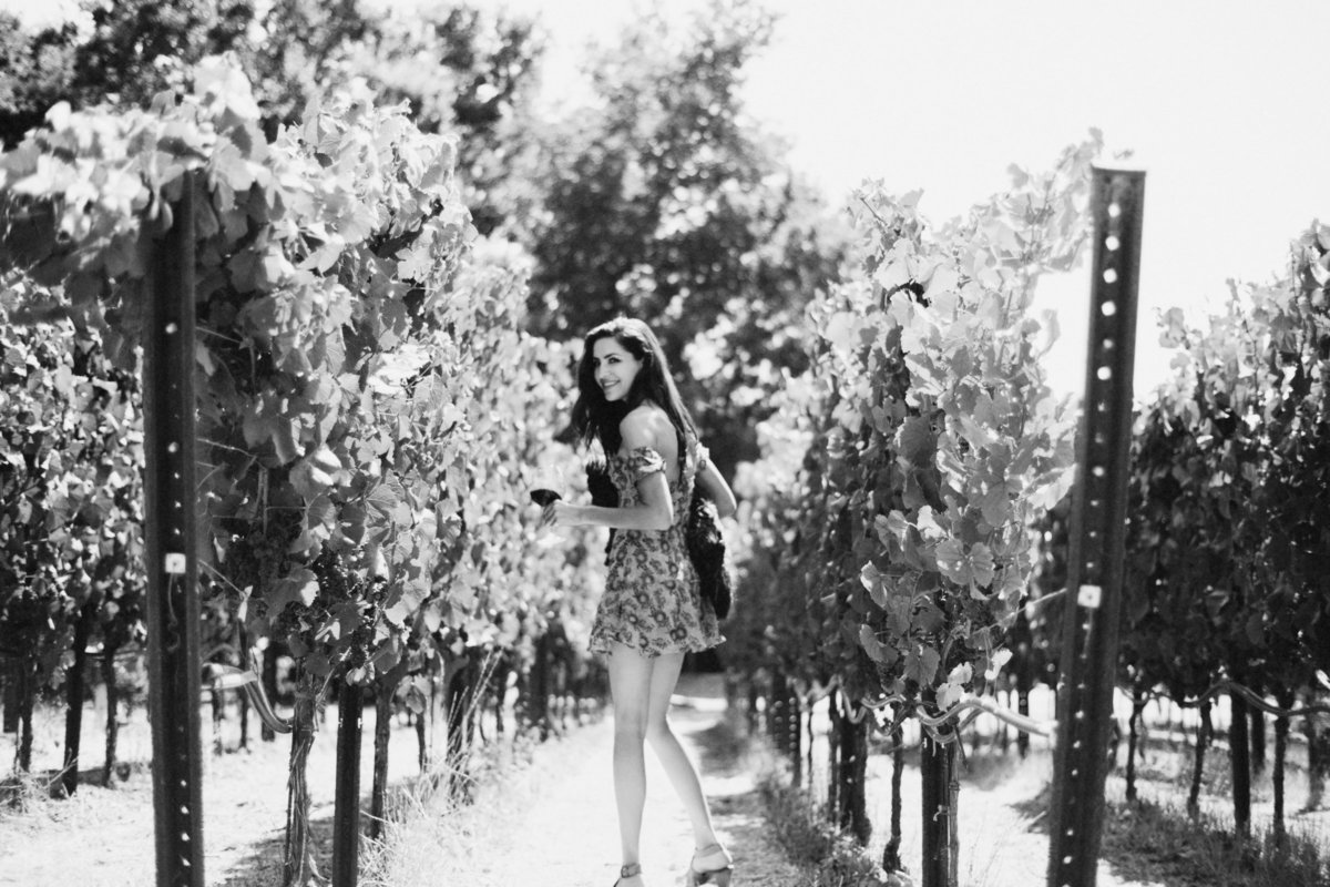 Sonoma Vineyard -102_BW