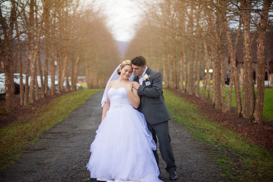 mcguires_millrace_farm_murphy_nc_wedding_photographer_row_of_trees