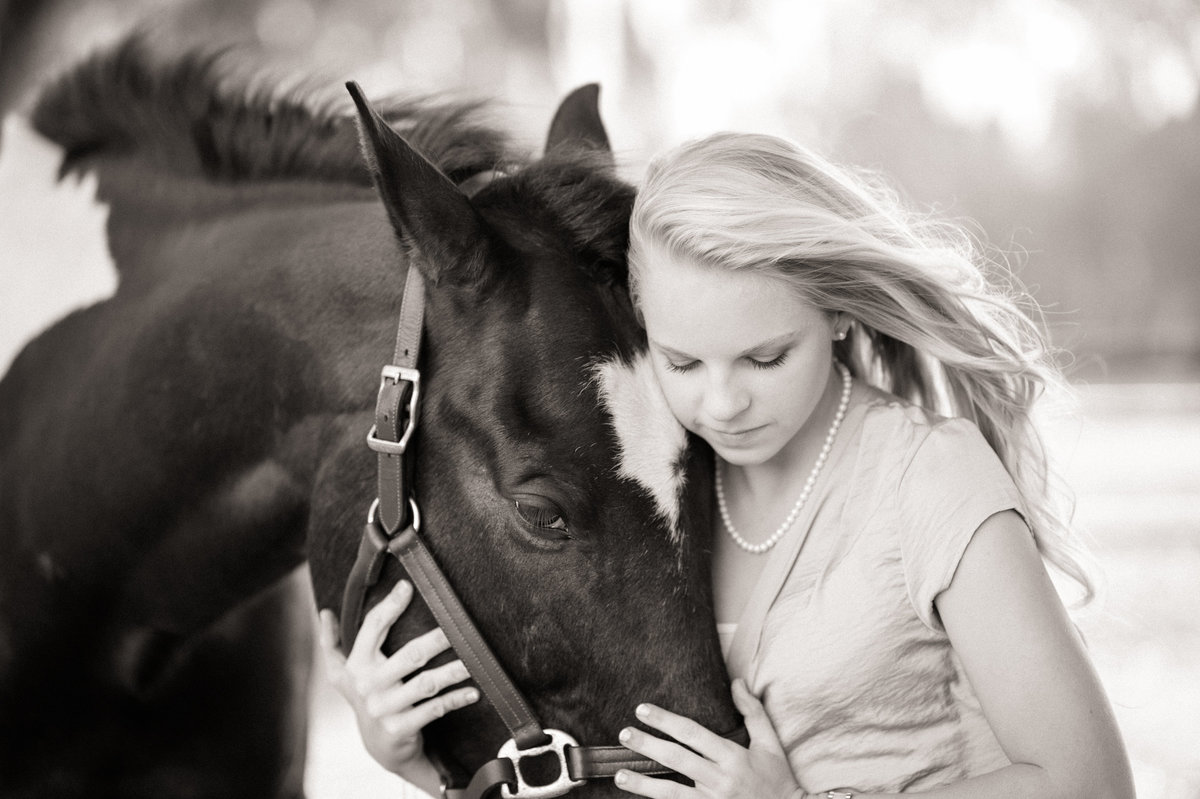 Equine Photography Ocala