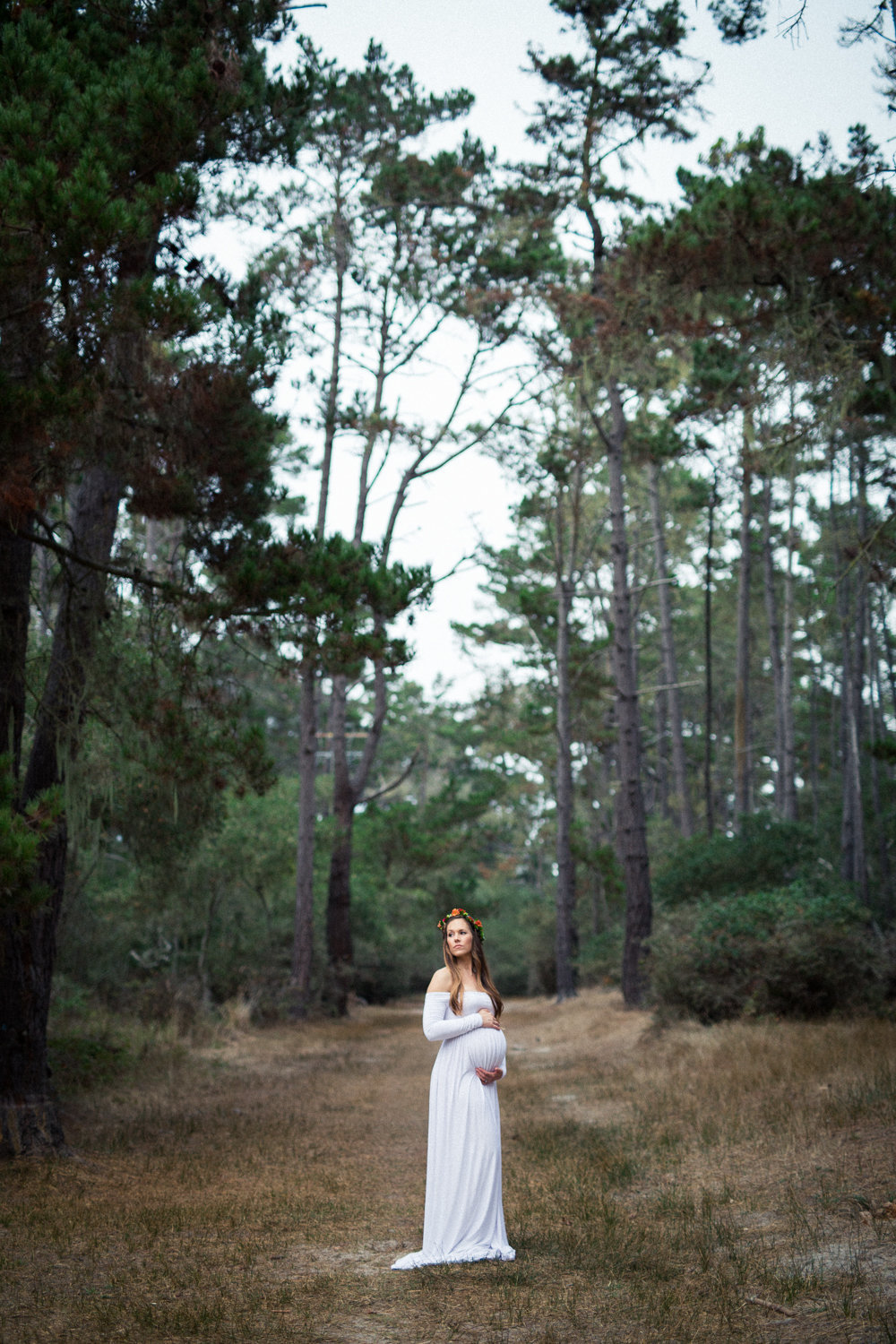 Moody forest maternity photos in Monterey