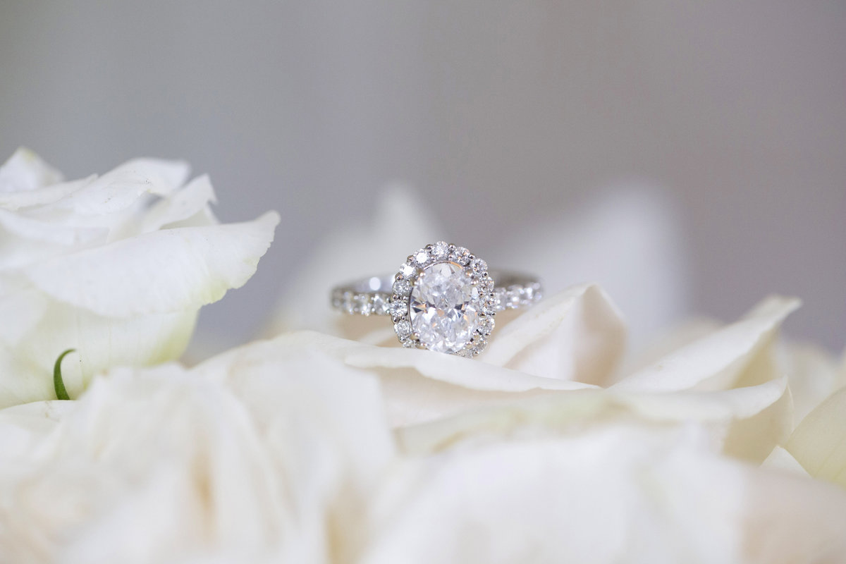 new jersey engagement ring wedding photography (6)