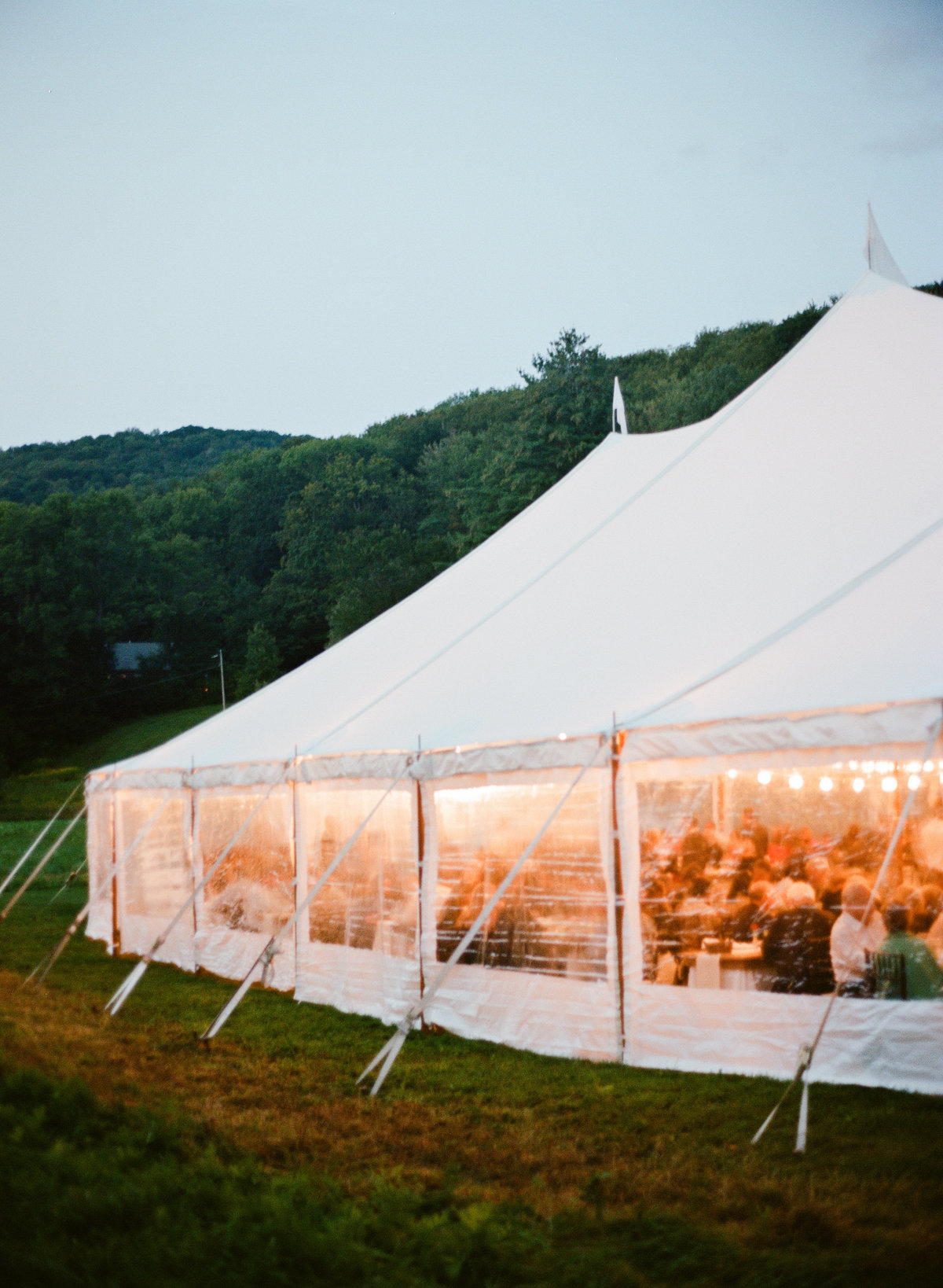 backyard wedding boston tent at dusk