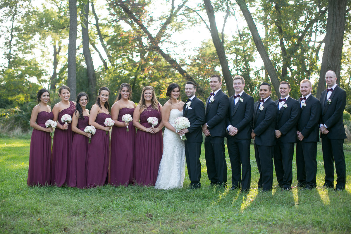 chicago wedding photographers, illinois photography, photographers, top (29 of 70)