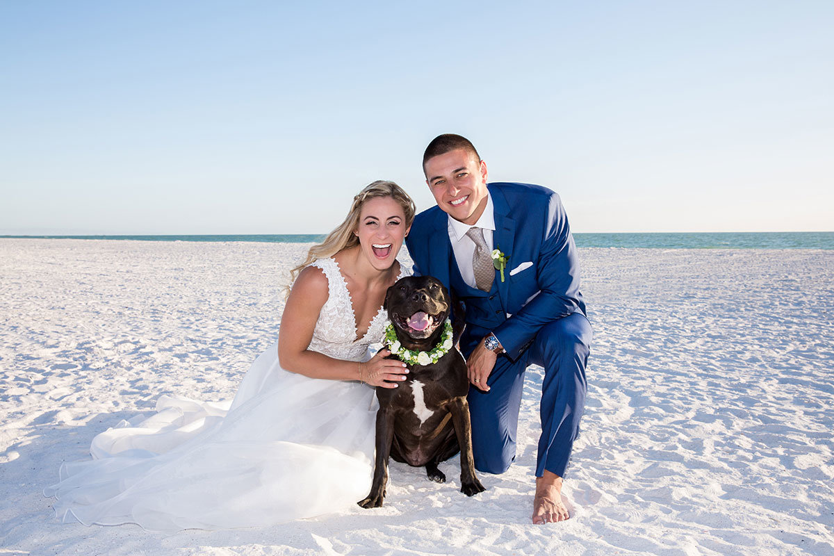 marco beach ocean resort beach dog wedding photo
