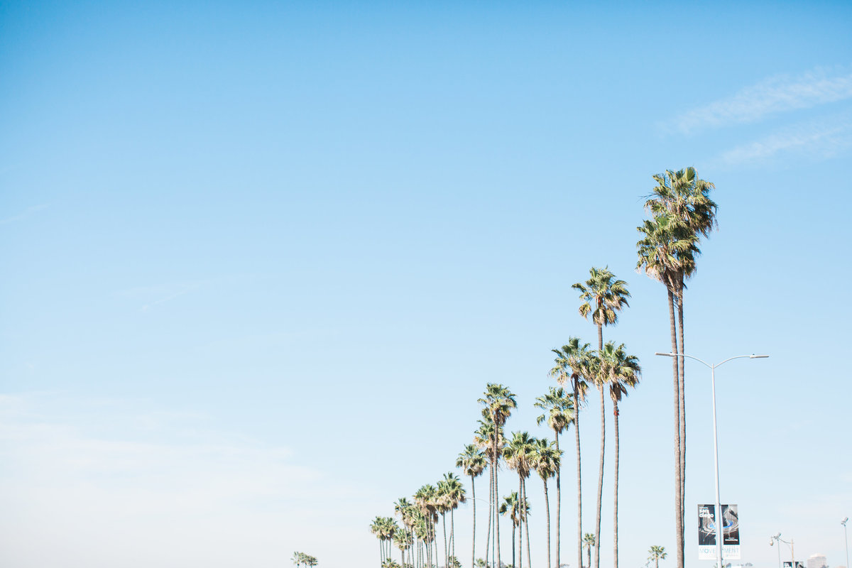 California, Marissa Decker Photography
