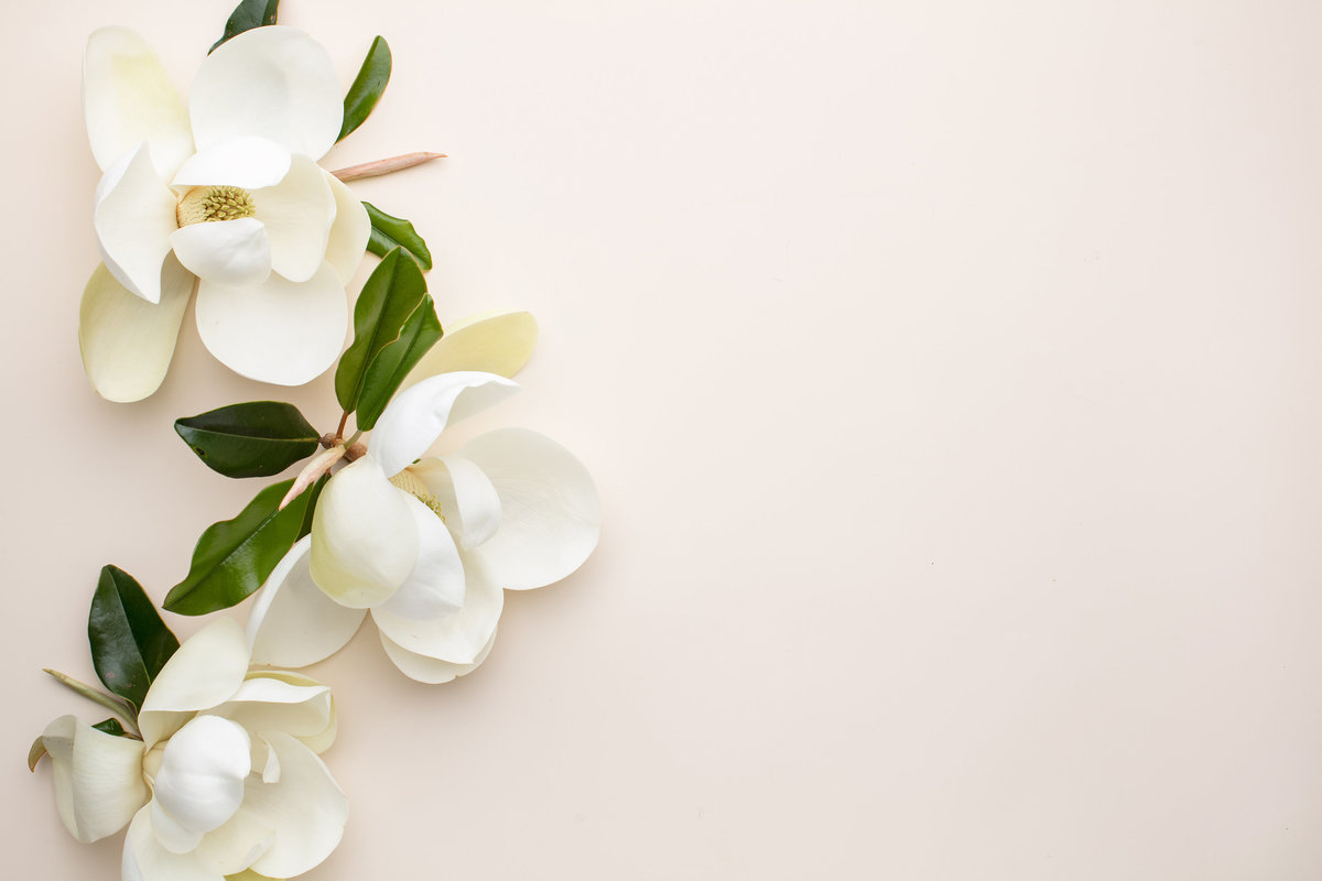 May Magnolias Free Styled Stock_SC Stockshop-3