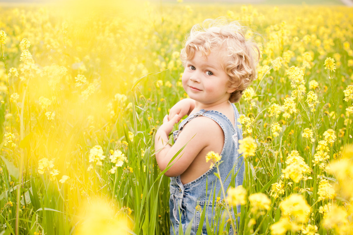 Boy in flower feild