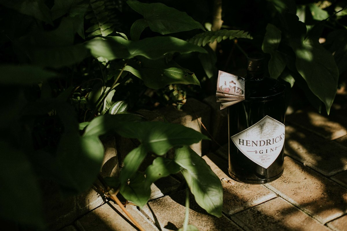 Hendricks Gin in greenery at Garfield Conservatory
