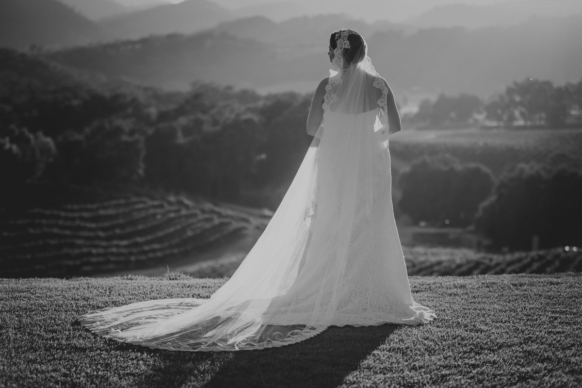 opolo_vineyards_wedding_by_pepper_of_cassia_karin_photography-134