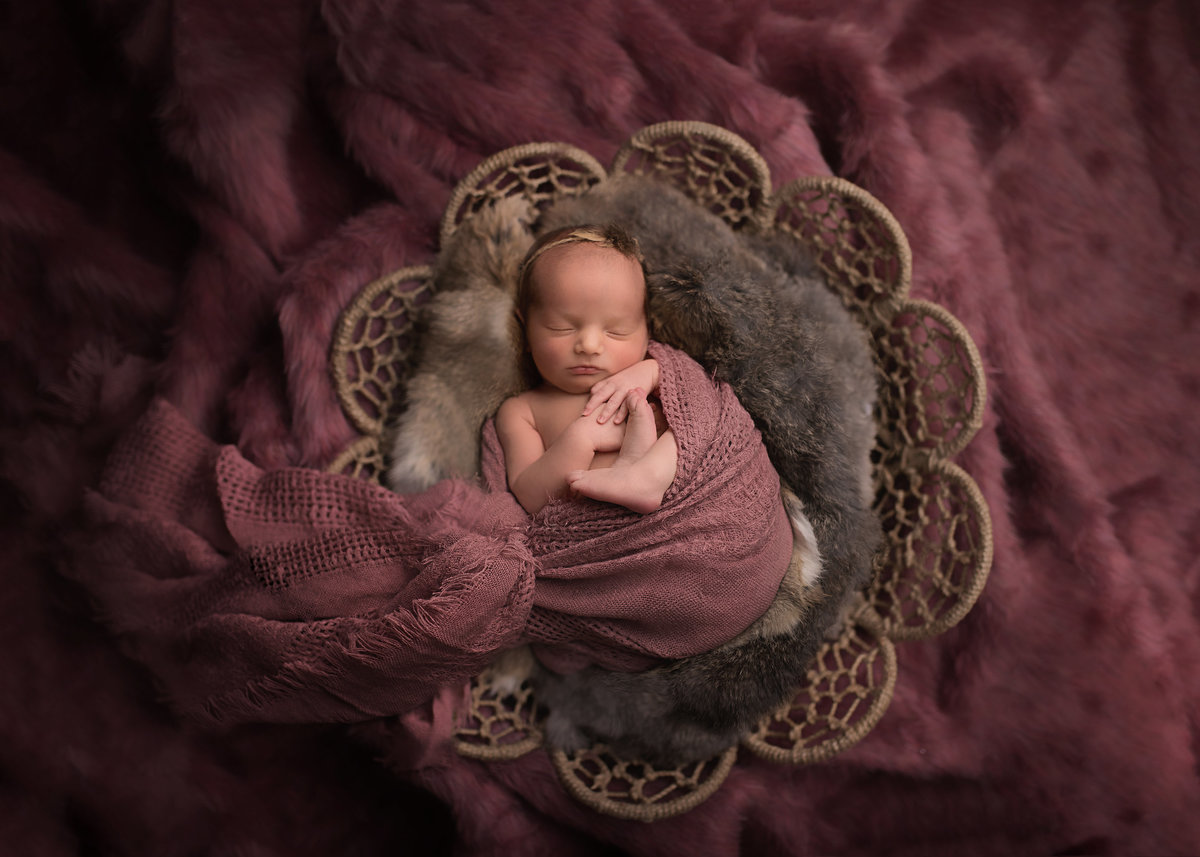 Traverse-city-newborn-photography1