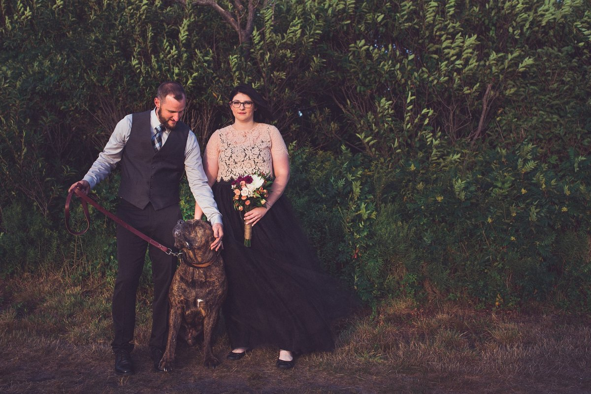 beavertail state park elopement with Boerboel