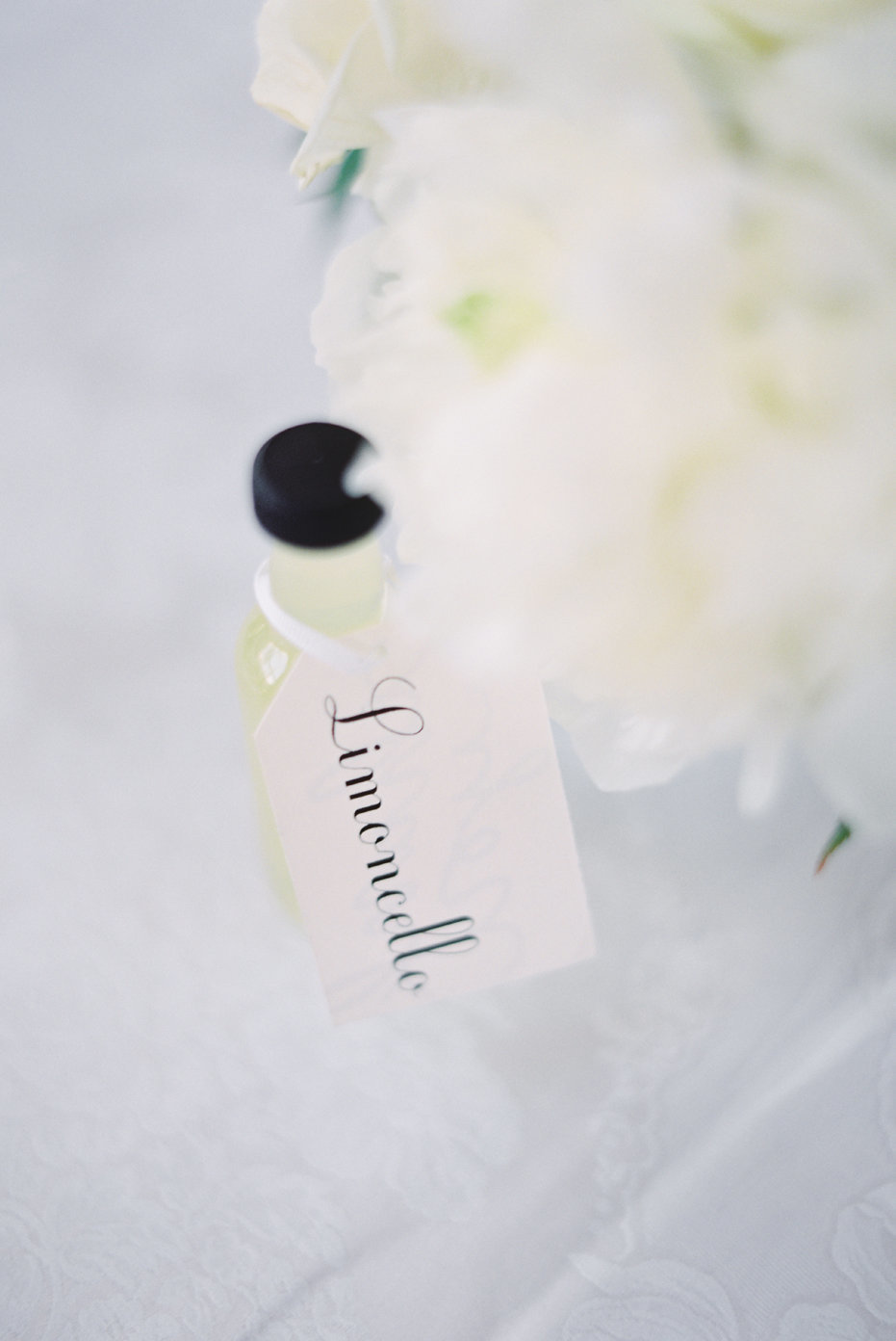 lake_como_italy_villa_balbianello_destination_wedding_melanie_gabrielle_081