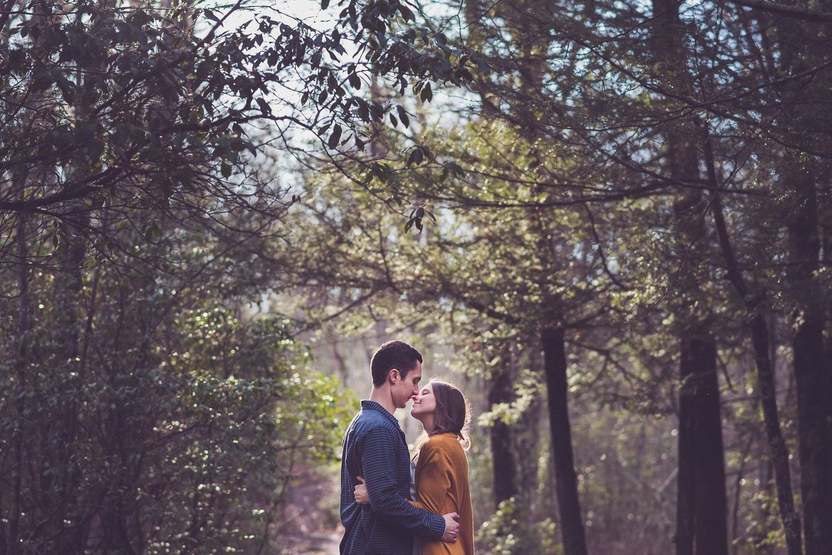 boston-forest-engagement-photo
