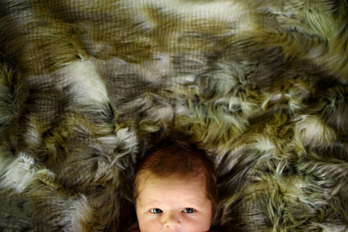 A week old baby looks up while laying on a brown fur blanket.