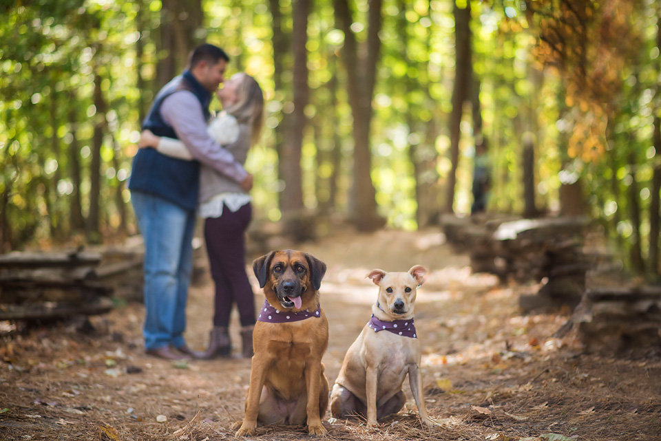 kennesaw_mountain_national_battlefield_park_engagement_photos_dogs_leung