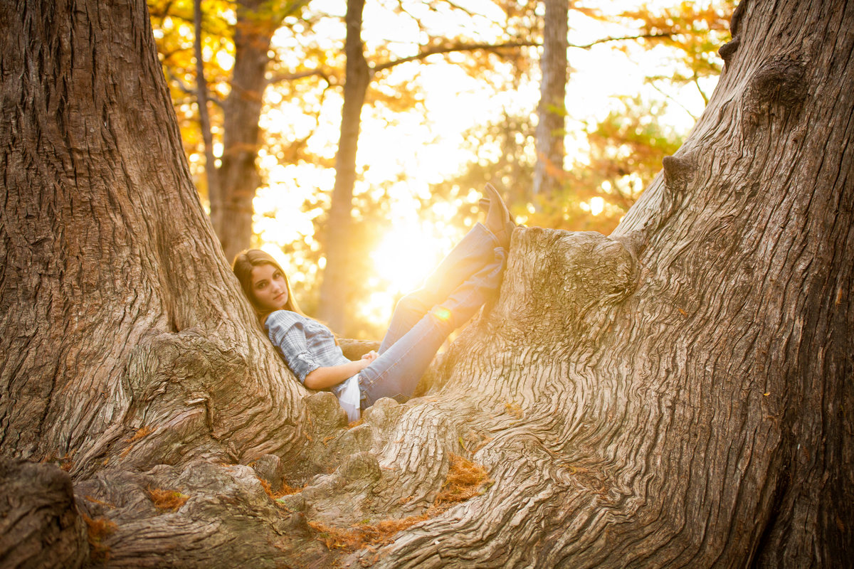Senior Picture in huge tree in Austin Texas sunset
