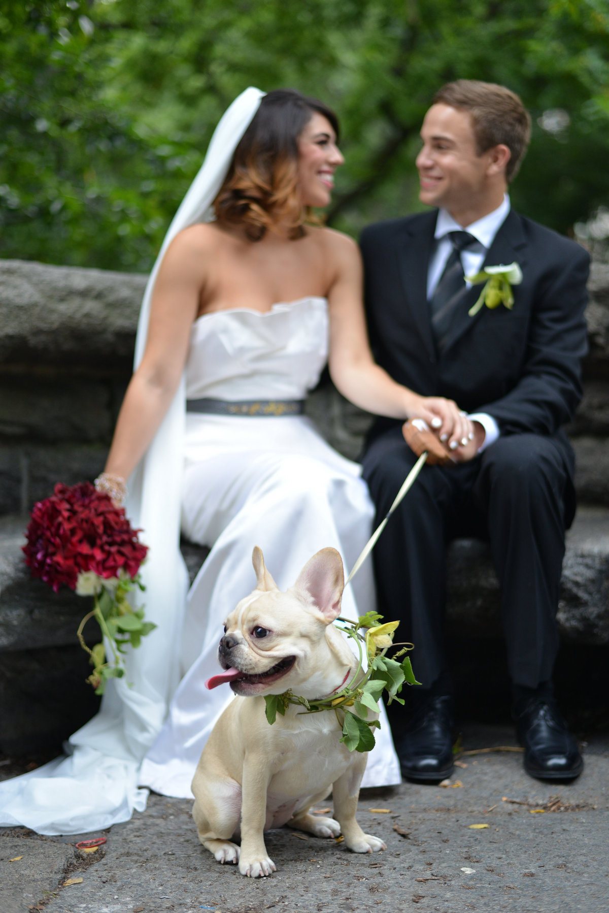 french bulldog, nyc wedding photography, artistic, unique, beautiful