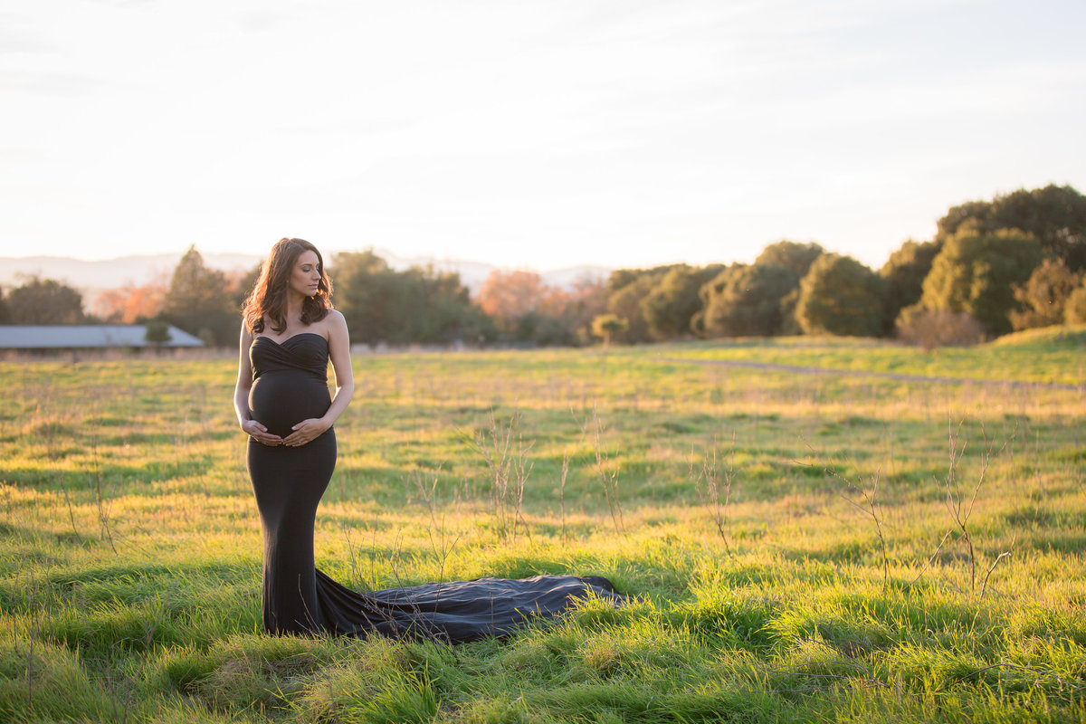 Heidi Maternity Session _ Vanessa Hicks Photography  2016-2225