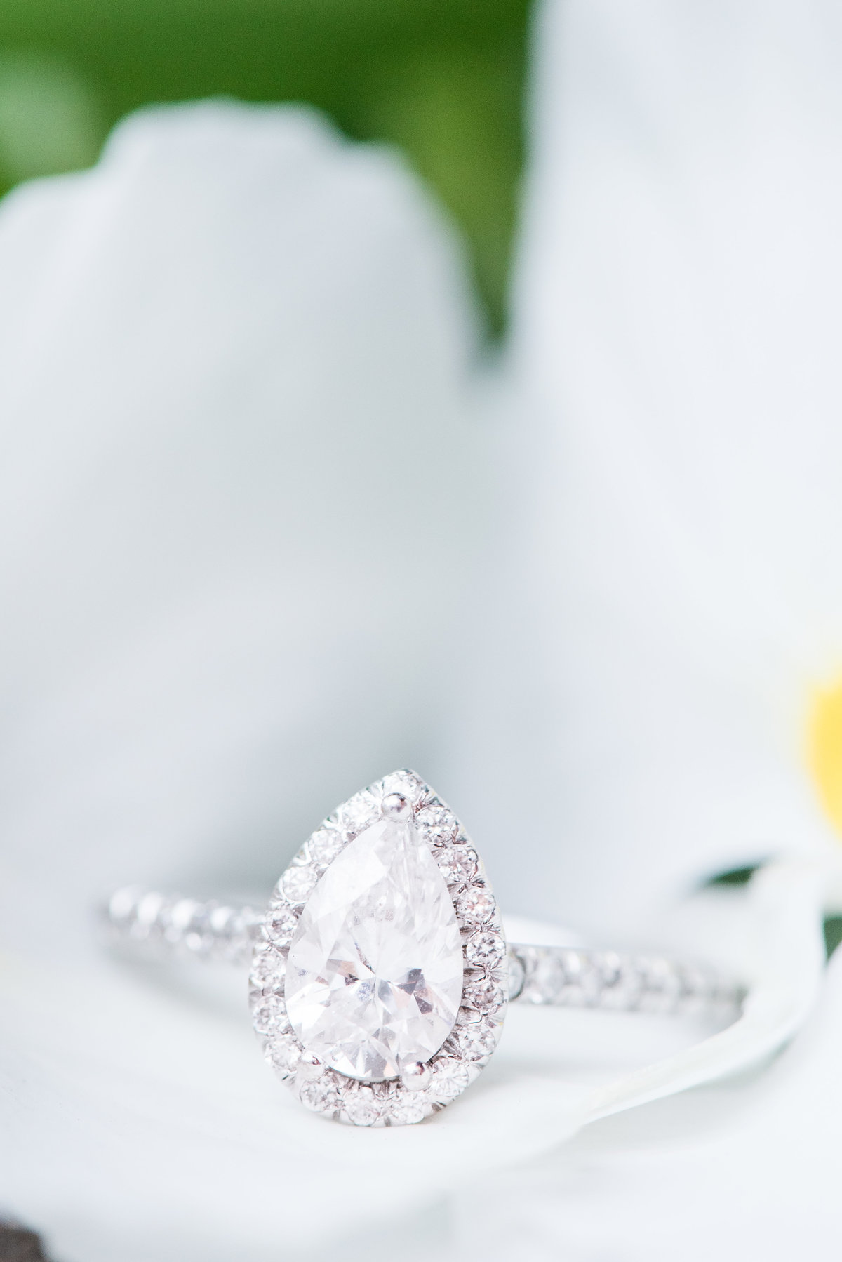 close up engagement ring photograph
