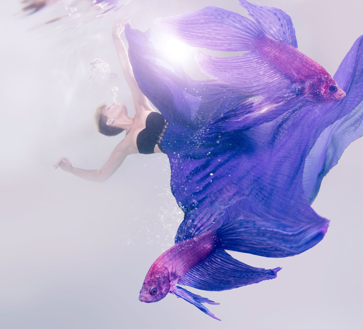 underwater fashion photographer jenn bischof underwater photography