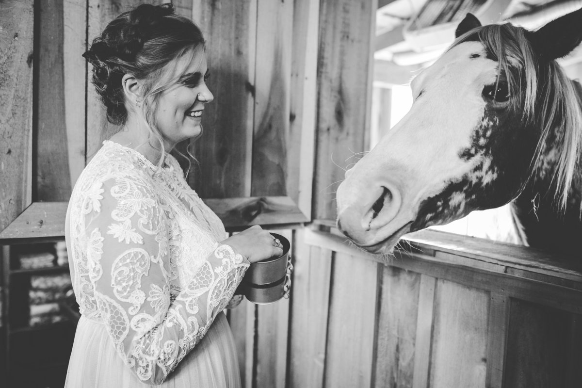 Cactus Creek Barn - Dickson Wedding - Dickson TN - Outdoor Weddings - Outdoor Wedding - Nashville Wedding - Nashville Weddings - Nashville Wedding Photographer - Nashville Wedding Photographers100