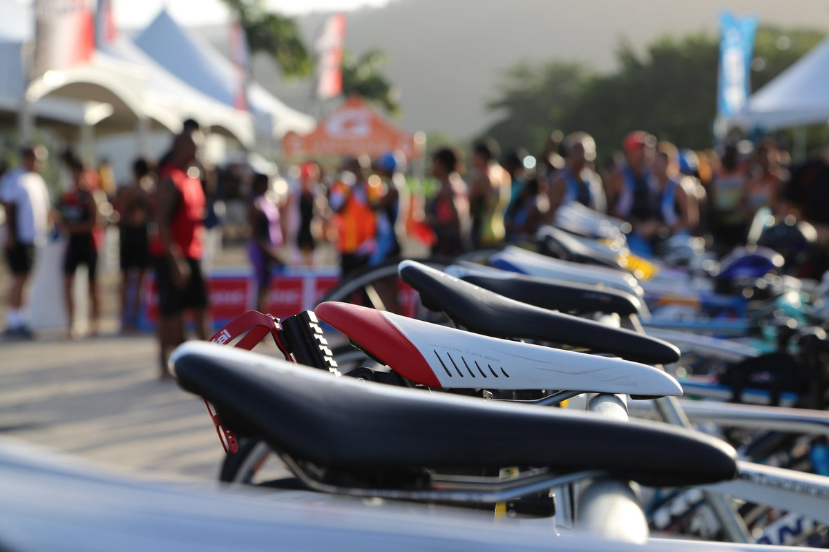 Close up of many bicycle seats in a row. Photo by Ross Photography, Trinidad, W.I..