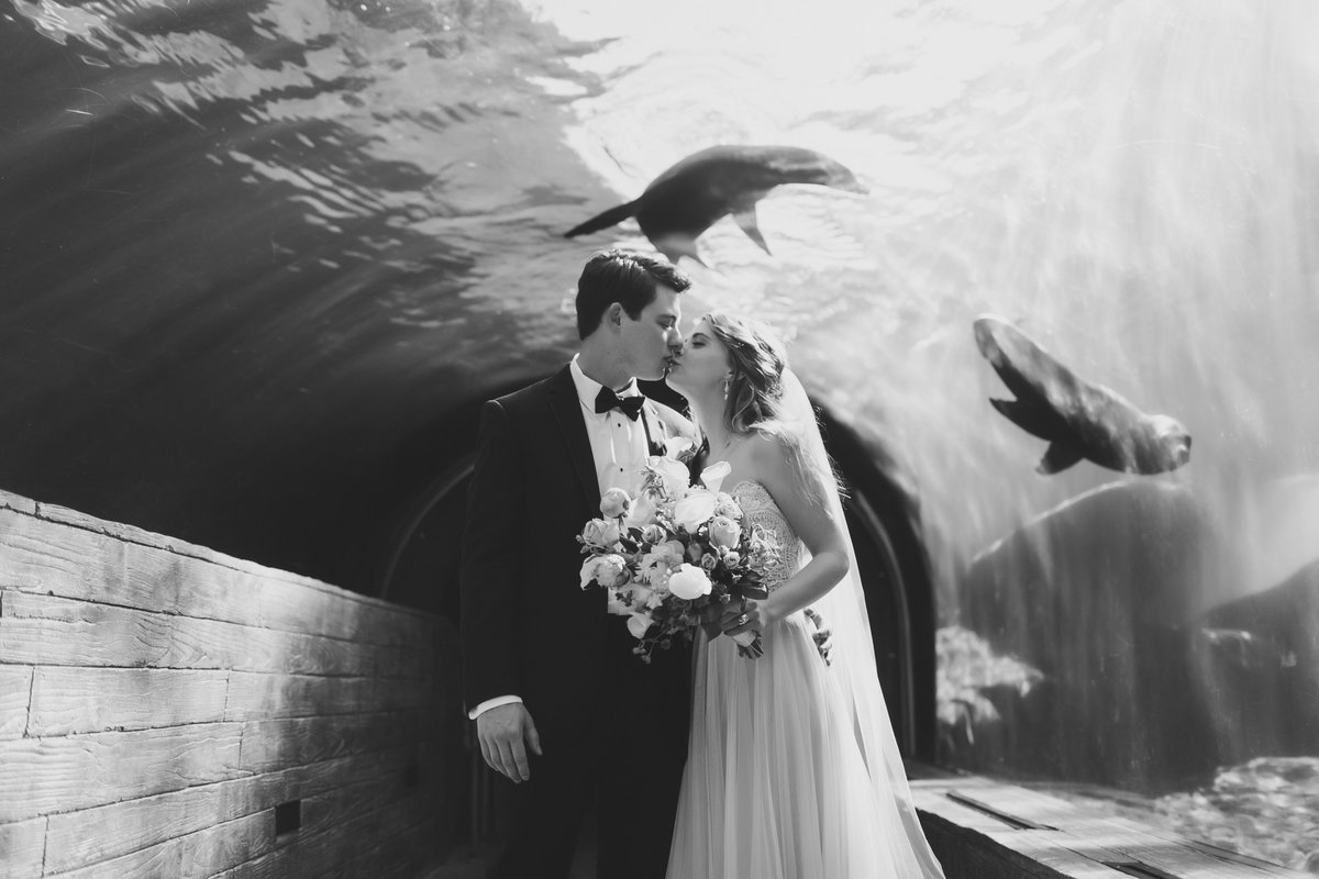 StLouisZooWedding_ChloeBrian_CatherineRhodesPhotography25-Edit