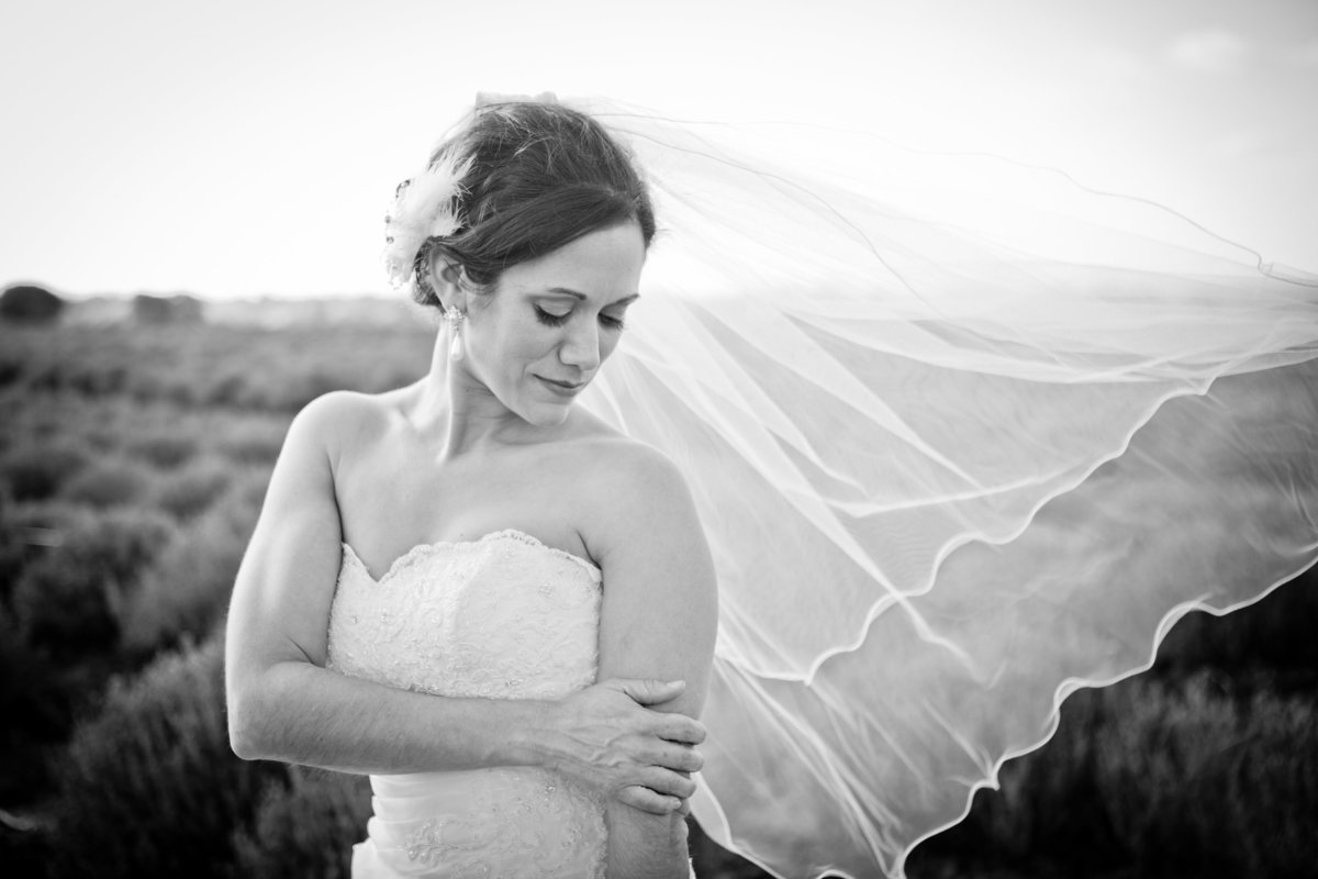 Austin Family Photographer, Tiffany Chapman, bride with blowing veil photo