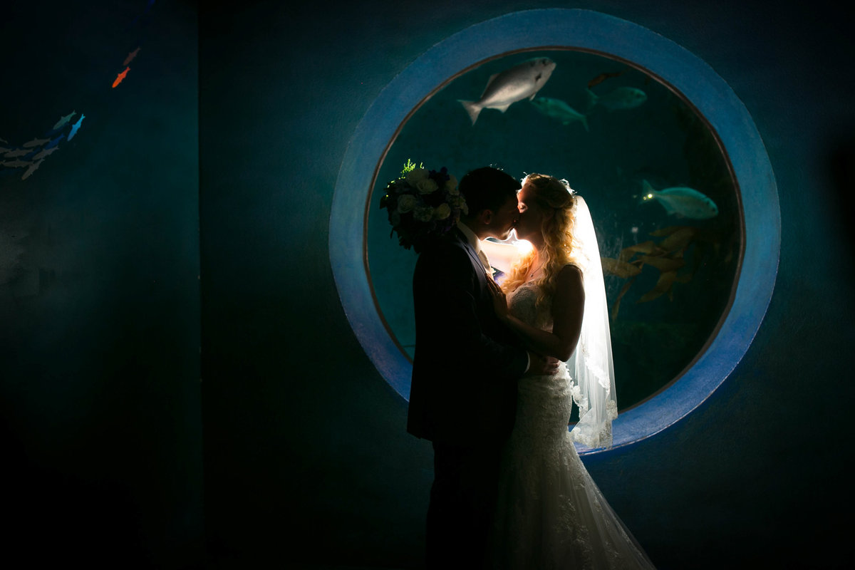 chicago wedding photographers, illinois photography, photographers, top (57 of 70)