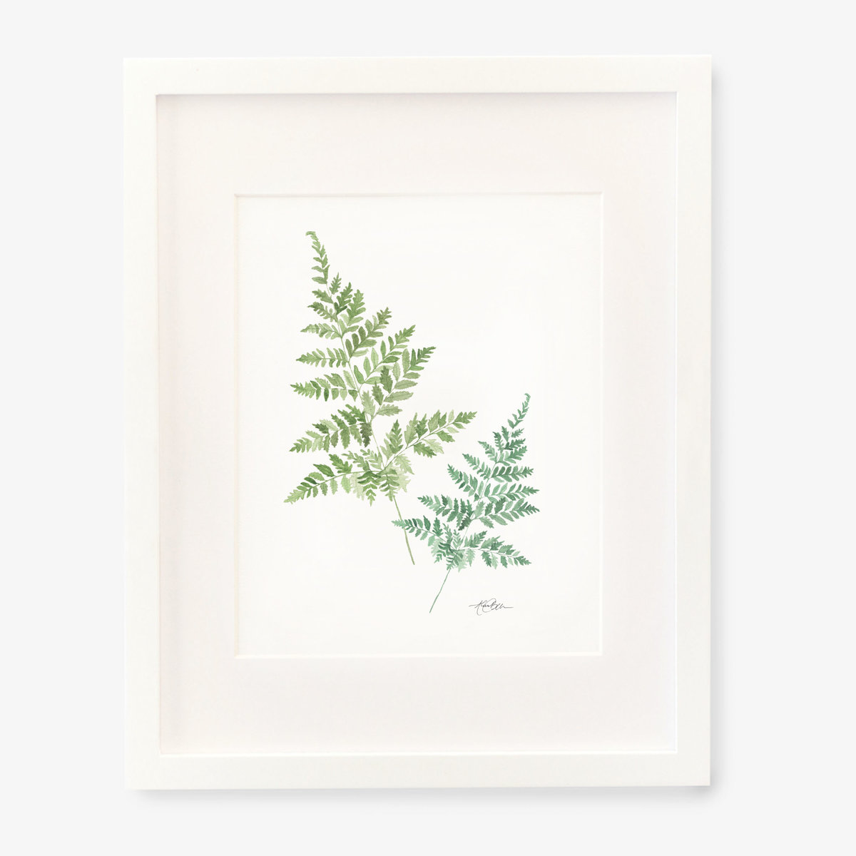 ferns_8x10_square