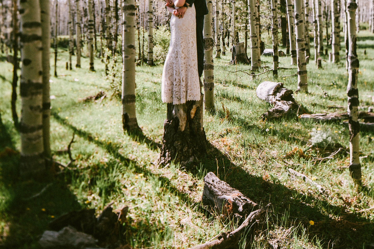 Flagstaff Elopement Photographer