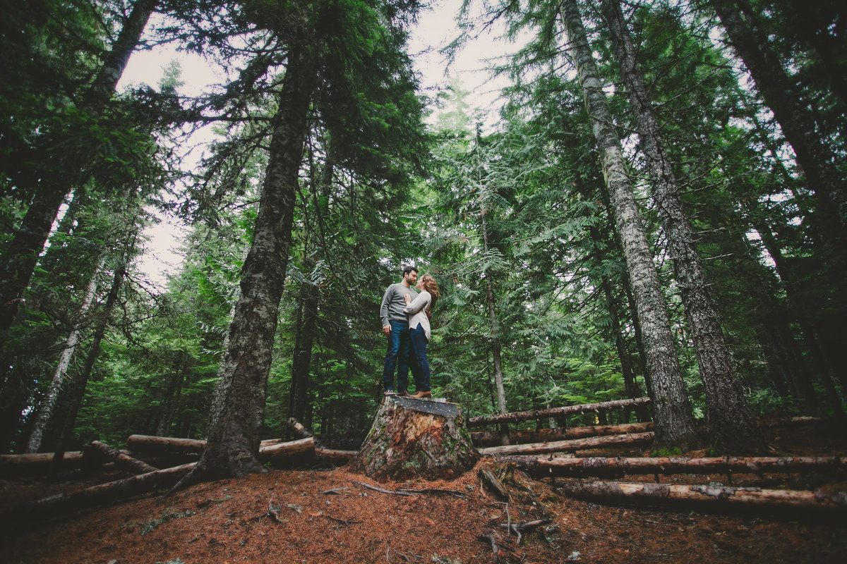 Oregon woods engagement session | Susie Moreno Photography