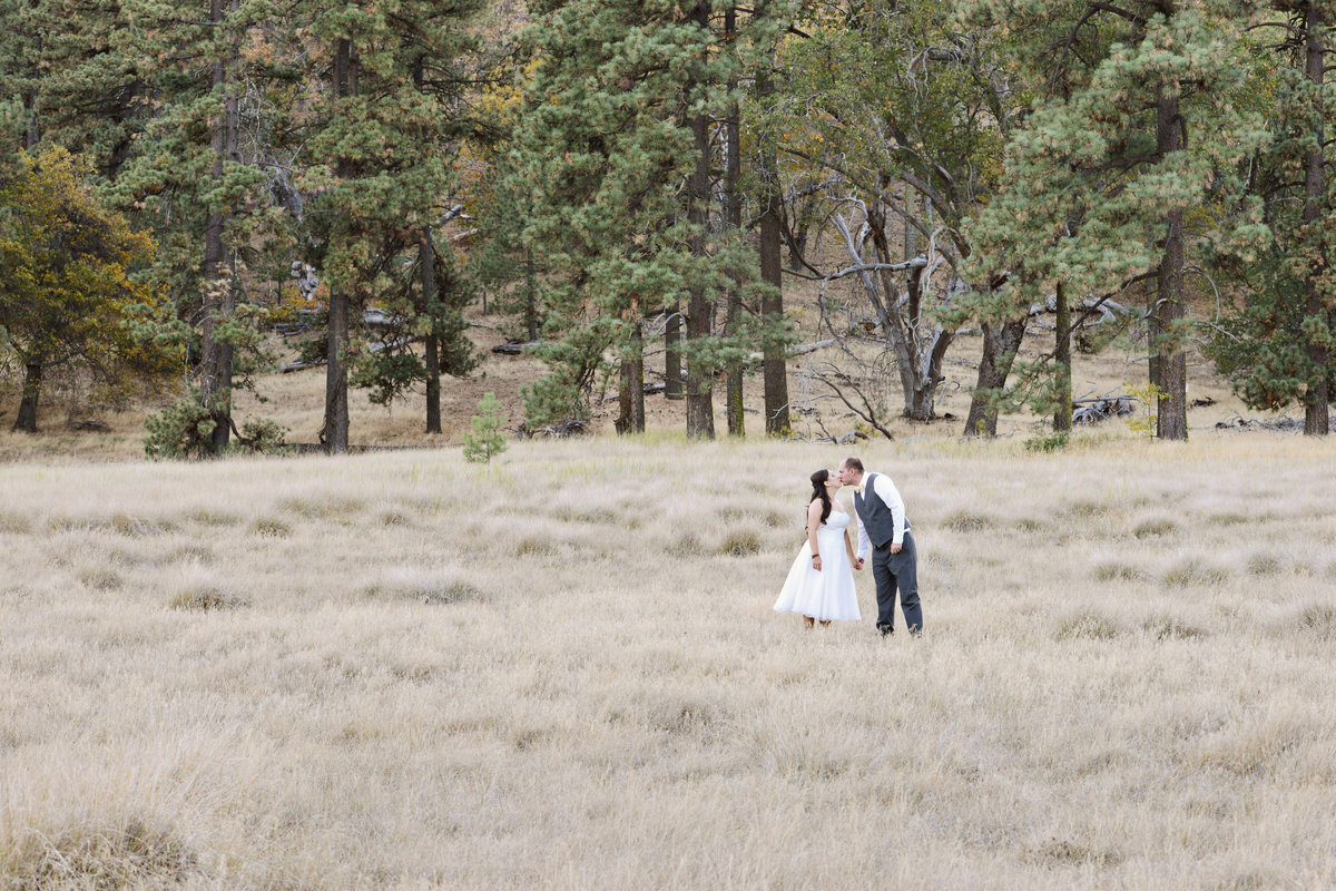 bride and groom standing near woods in Alpine California