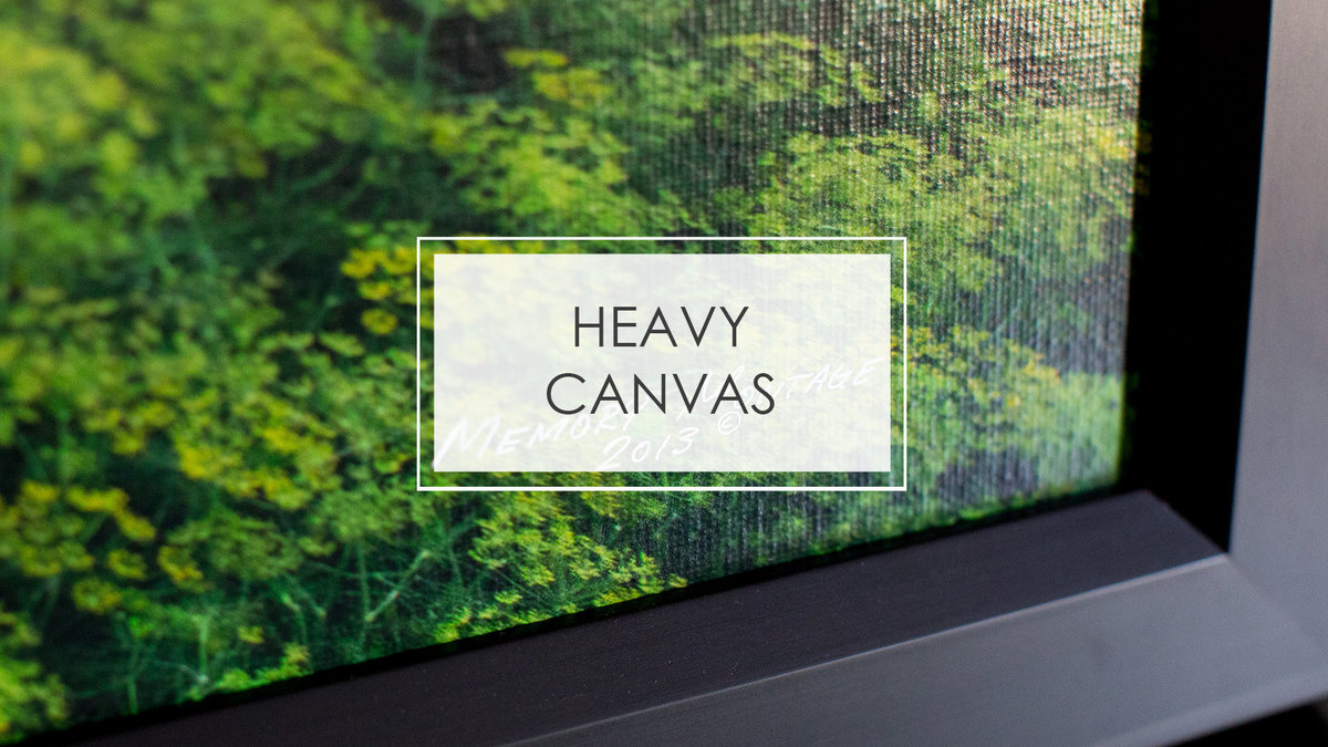 HEAVY CANVAS