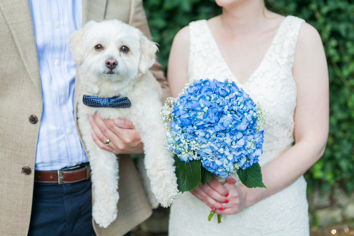 Photo of dog as the ring bearer next to the bride and groom and a bridal bouquet  | Susie Moreno Photography