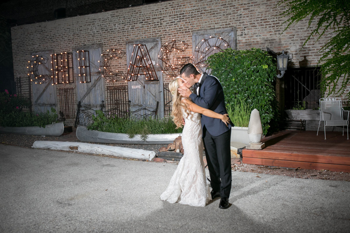 chicago wedding photographers, illinois photography, photographers, top (67 of 70)