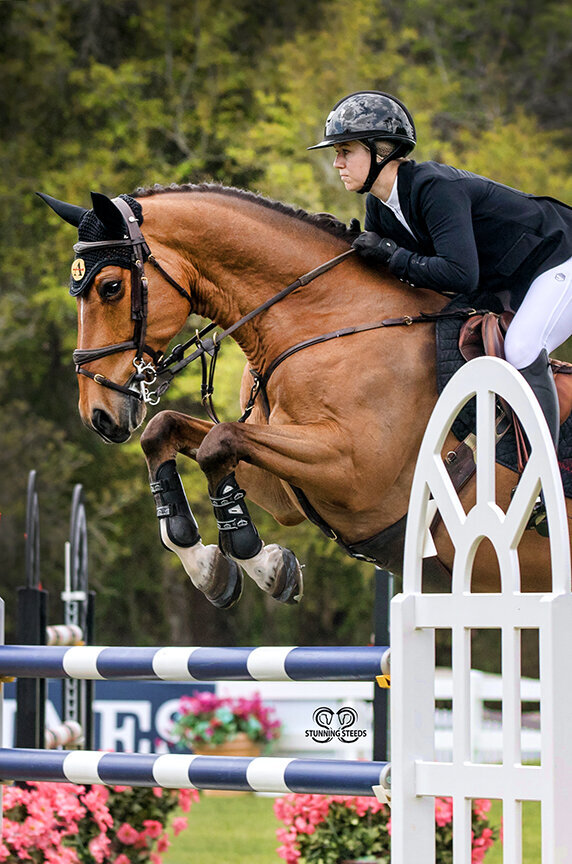 Live Oak International Jumper photo