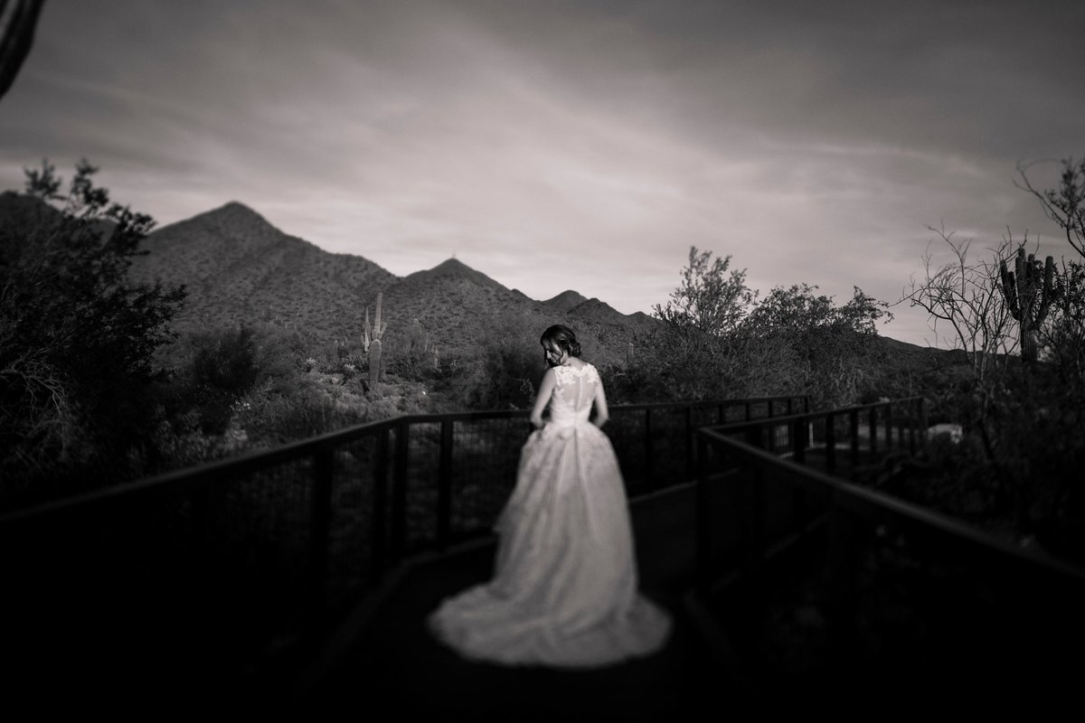 Phoenix-Wedding-Photographer