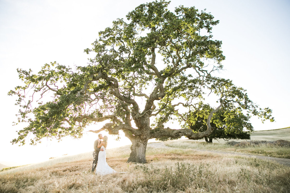 holman_ranch_carmel_wedding_018