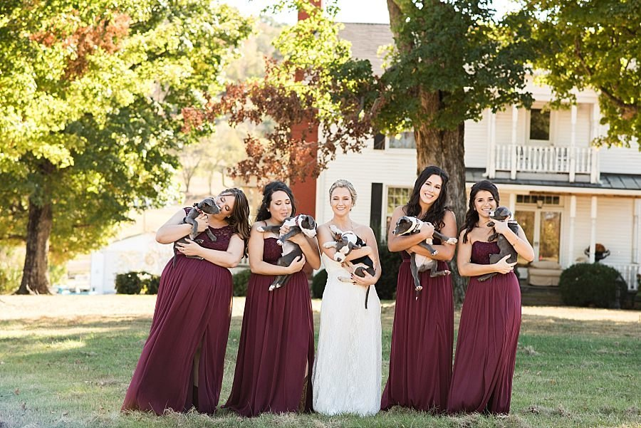 5 ladies hugging dogs on a fall wedding day