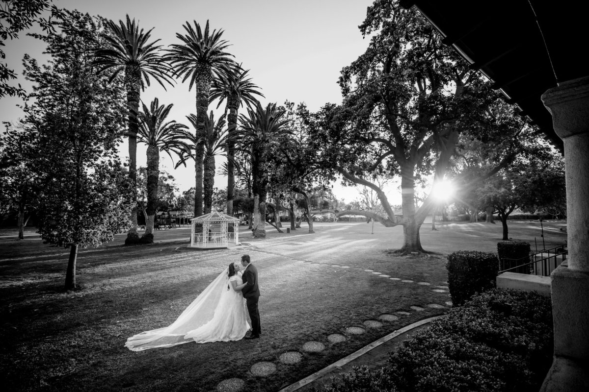Nadean_and_James_Wedding-4096