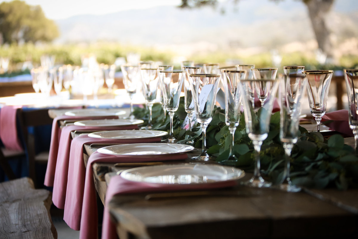oyster_ridge_vineyards_wedding_paso_robles_ca_by_pepper_of_cassia_karin_photography-127