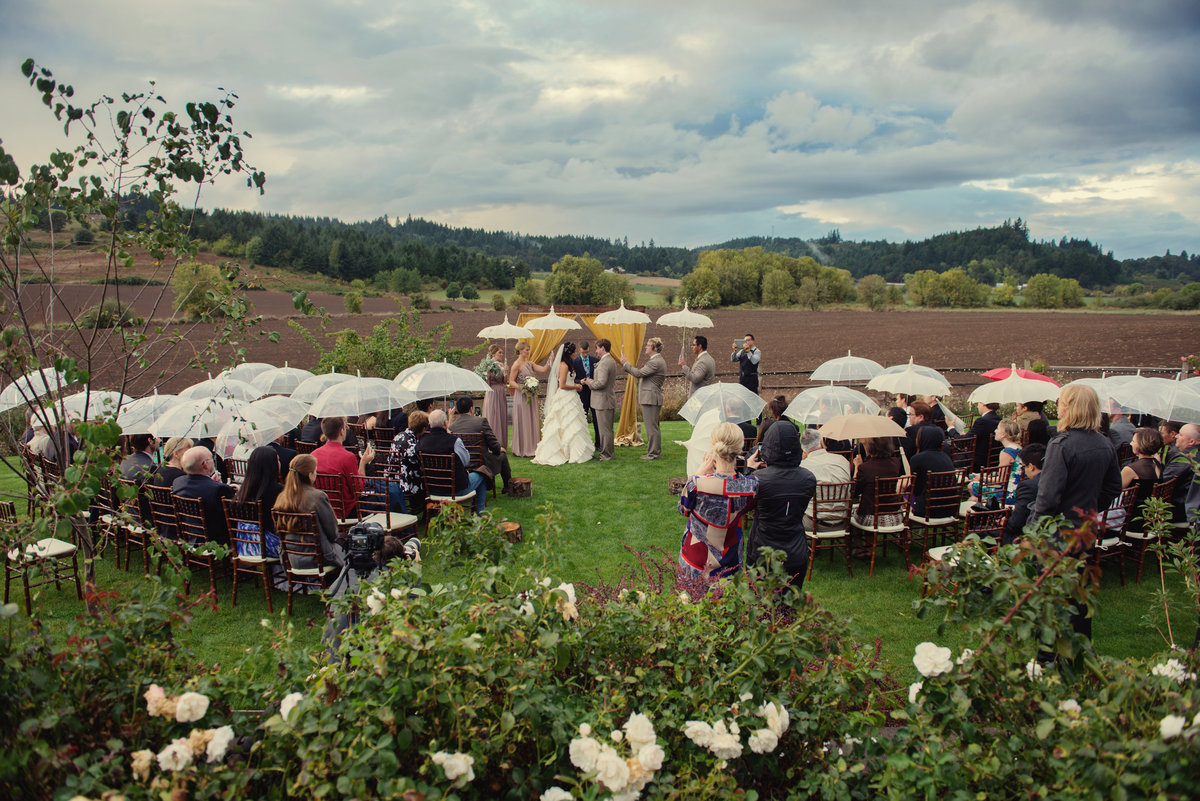 all the wedding guests have umbrellas at laurel ridge winery