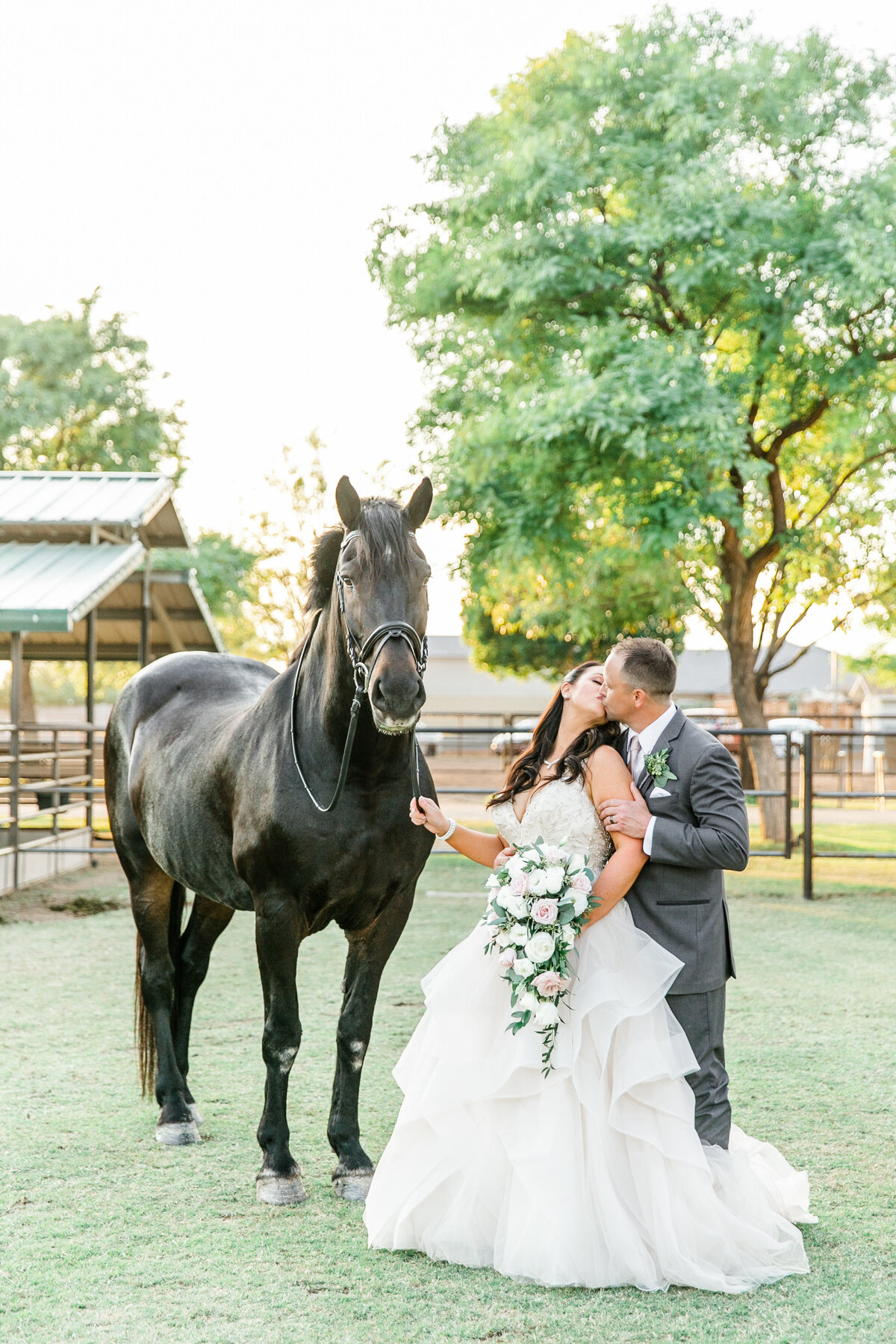 Karlie Colleen Photography - Glendale Arizona Backyard ranch wedding - Meghan & Ken-488