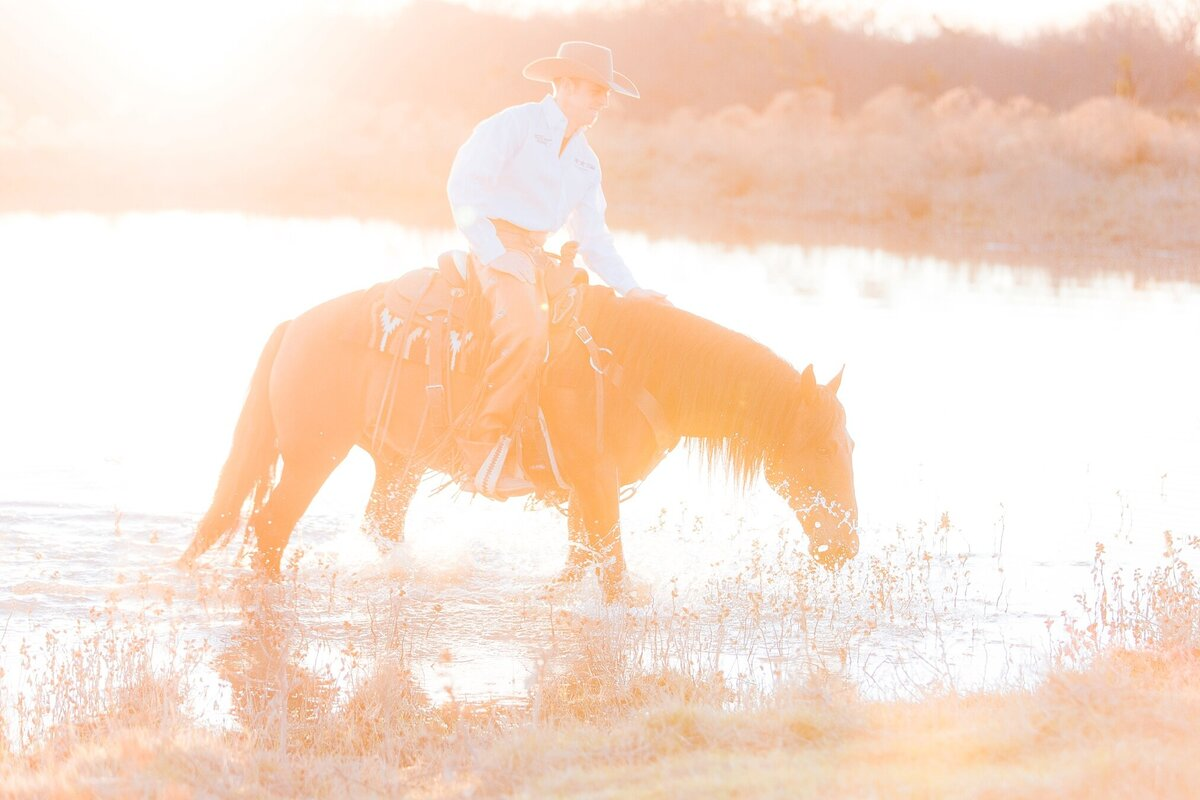 mustang horse in the water at sunset with a cowboy on his bac