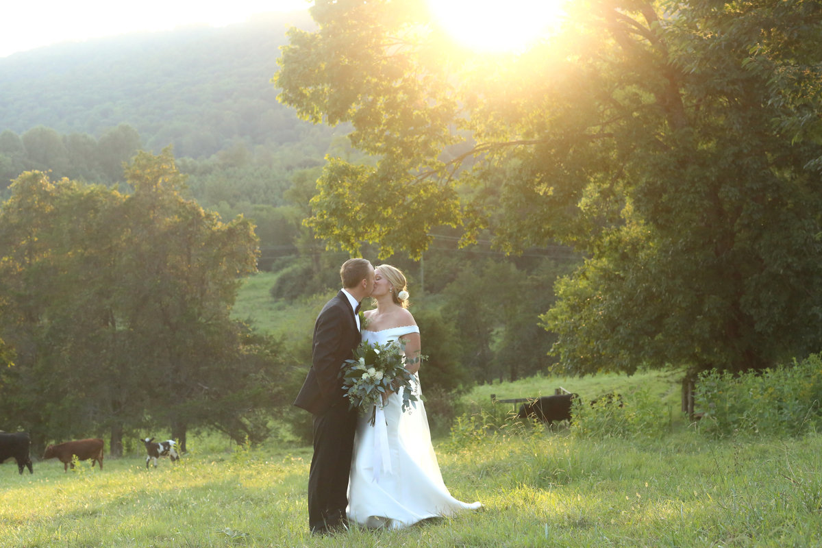 charlottesville virginia wedding photographer heather michelle photography (1 of 1)-49