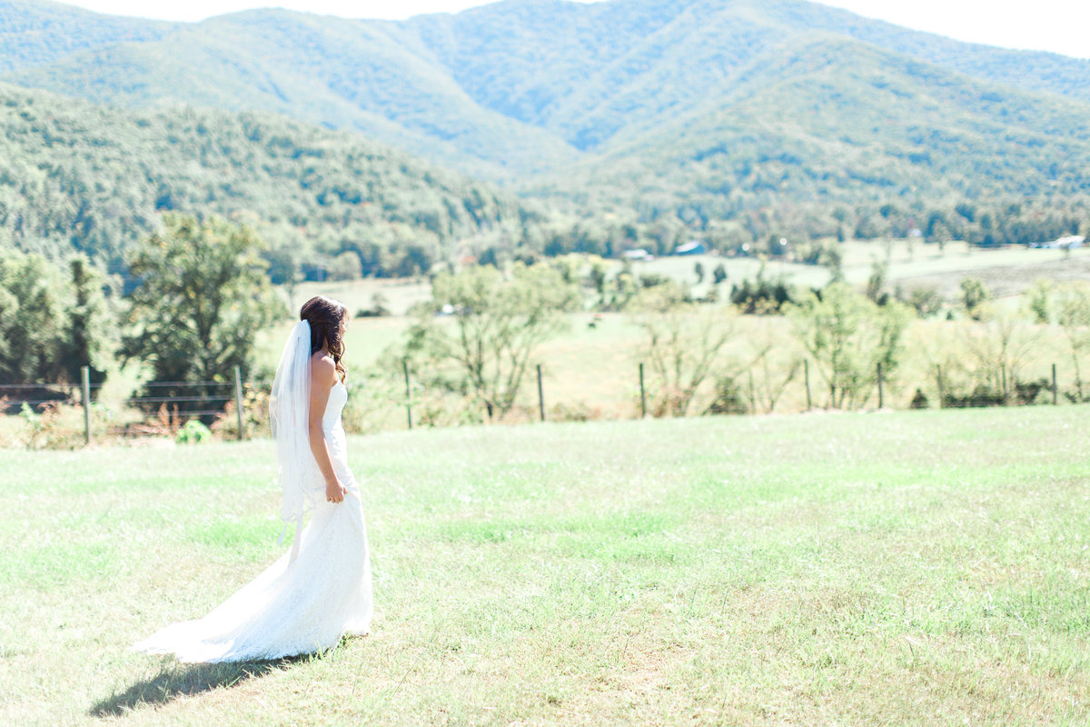 luray va wedding photographer